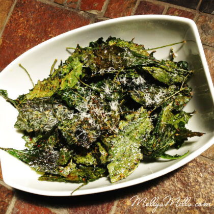 Molly's Mills Kale Chips
